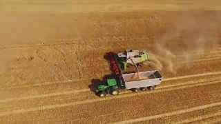 Class Harvest Time at Saxony Anhalt (5 Claas Lexion)