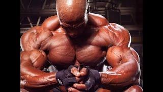 Качаем грудные мышцы и спину дома  Мышцы антагонисты