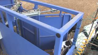 Korea Robotic Products(calf Nutrition Management Robot System - Robot And Design)