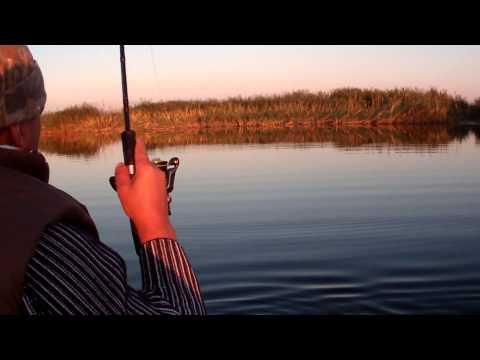 рыбалка в оренбурге на спиннинг