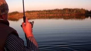 Рыбалка. Сентябрь 2014