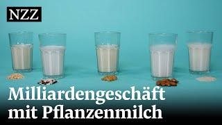 Pflanzendrinks aus Hafer, Soja, Mandeln: Auch Milchkonzerne profitieren vom neuen Trend