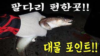 강원도 양양 발판 좋은 원투낚시 장어 포인트!!