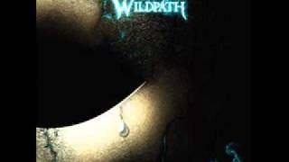 Watch Wildpath Dive video