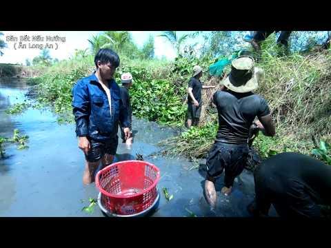 Phục hồi mương cá quanh chòi - nhóm Khôi về thăm kênh Săn Bắt Nấu Nướng
