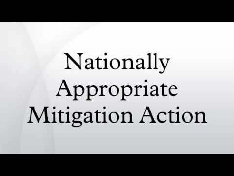Nationally Appropriate Mitigation Action