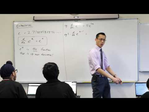 Calculus of Exponential Functions (3 of 4: Basic differentiation examples)