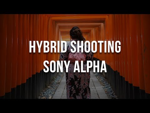 Hybrid Shooting with Sony Alpha Overview - a9 a7S II a7R II a6500 a6300