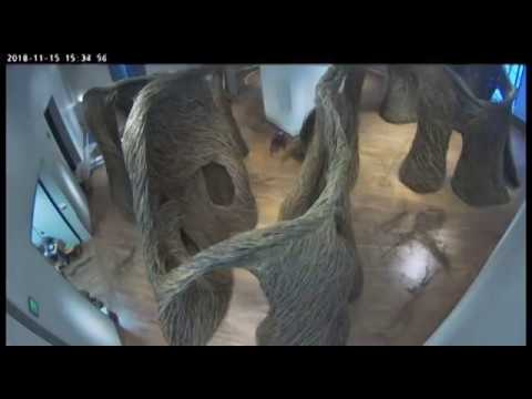 Patrick Dougherty Timelapse - Windswept at BYU Museum of Art