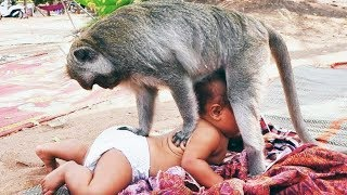 Funny Babies and Kids Trolled by Animals