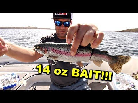 Fishing GIANT Baits for TROPHY Fish!!! Swimbait LEGEND Reveals his Secrets!