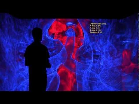 VR Lab - CT Scan CAVE Viewer