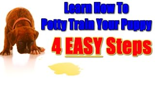 How To Housebreak a Puppy or Dog  ☼ WATCH & LEARN ☼  Easy Way Potty Train A Puppy :)))