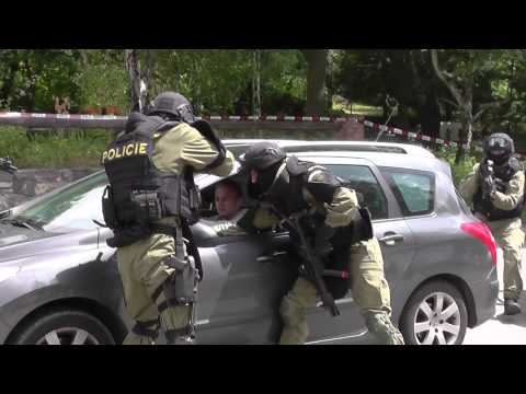 Den Policie 2015 Ostrava - Ukázka činnosti ZJ (2. ukázka)