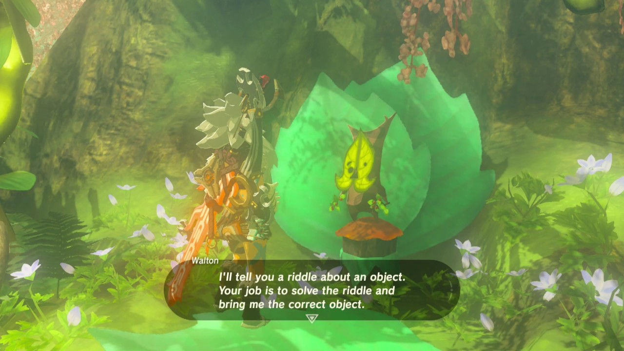 Riddles Of Hyrule Quest Legend Of Zelda Breath Of The Wild Youtube