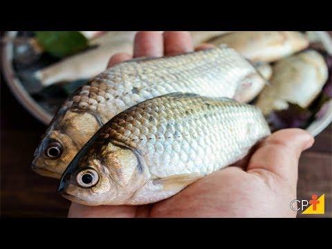 Clique e veja o vídeo Curso Técnicas de Processamento de Peixes CPT