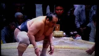土俵への登り降りが痛そう #大相撲 #安美錦 #勢.