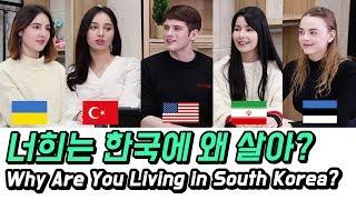 너희는 한국에 왜 살아? TV에 나오는 외국인 보면 어…