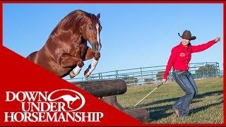 Shana and Marty at Liberty  Downunder Horsemanship