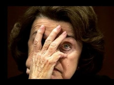 Dianne Feinstein  gets schooled on her own assault weapons Bill S150 at Judiciary Committee SH-216