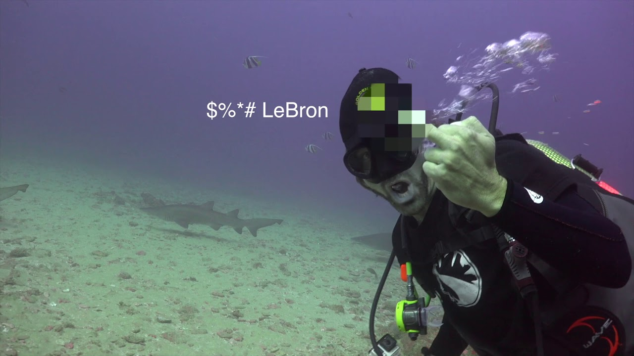 Fuck LeBron. Fuck him underwater with sharks too - YouTube