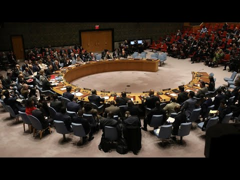 'The UN is a hopelessly corrupt clown operation'