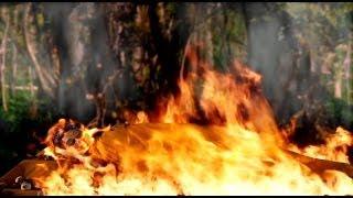 Phim Phật Giáo: Con Đường Giác Ngộ ★ 4 / 4 ★ Path to Enlightenment (Buddhist Film) (Eng Sub)