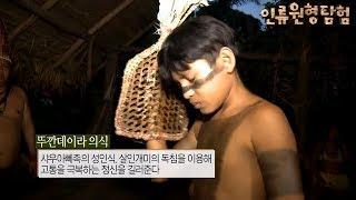 인류 원형 탐험 - 스무 번의 성인식 브라질 아마존 샤우아뻬족_#003