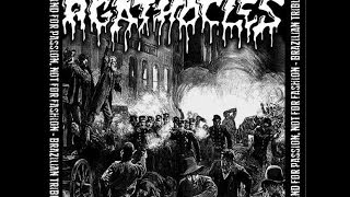 VA - Grind For Passion, Not For Fashion - Brazilian Tribute to Agathocles - (Full album) (2014)