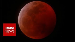 Why does a 'super blood wolf moon' lunar eclipse have such a complicated name?  - BBC News