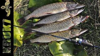 Первая Щука в этом сезоне Рыбалка одной приманкой рыбалка щука спиннинг