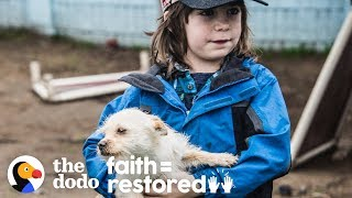 Family Keeps Going To Mexico To Rescue Dogs | The Dodo Faith = Restored thumbnail