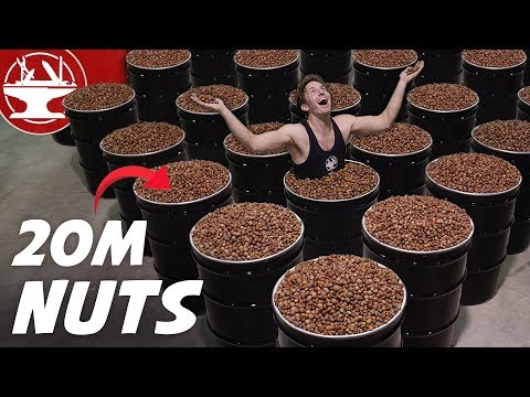 We Collected 20 MILLION NUTS for Mr. Beast!