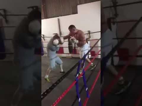 Cowboys Michael mcdonagh sparring