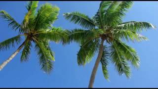 Leonid Rudenko -  Summerfish (Sunset on Ibiza Mix)