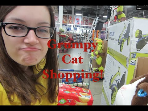 Grumpy Cat Shopping!