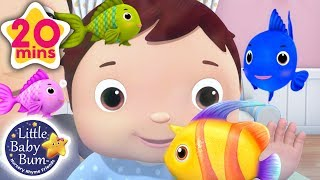 Learning Colors for Kids | Color Fish Song +More | Little Baby Bum
