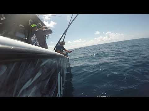 Swordfishing With Capt. Justin Fayard With The Mexican Gulf Fishing Company In Venice, La.