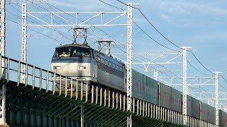 2019/09/04 JR貨物 浜名湖三番鉄橋を渡る3本の貨物列車と他2本 1060レにEF210-901号機牽引