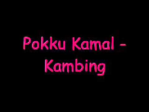 Pokku Kamal   Kambing