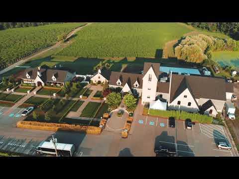 Vineland Estates Winery - Short Version