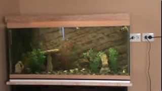 как оформить аквариум своими руками видео