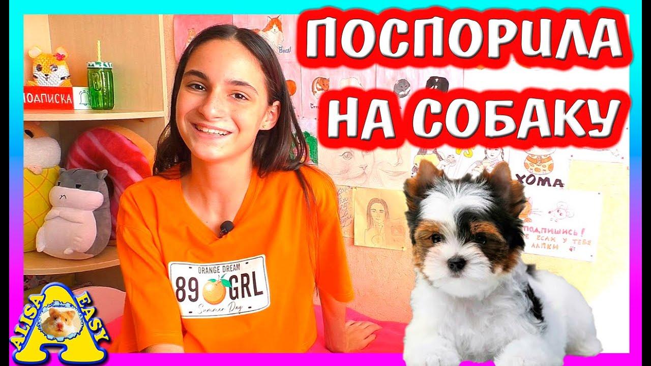 НОВЫЙ ПИТОМЕЦ / КТО ОН? / КАК УГОВОРИТЬ родителей КУПИТЬ Собаку, Хомяка, Кота / Alisa Easy Pets