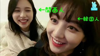 TWICE 関西人と韓国人の日常。 thumbnail