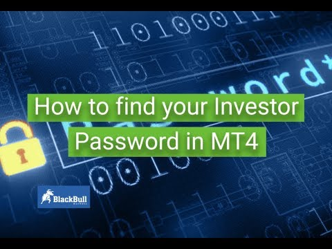 How To Find Your Investor Password In Mt4 Blackbull Markets