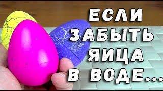 ОНИ УТОНУЛИ - ЯИЦА СЮРПРИЗ ФИКСПРАЙС С ИГРУШКОЙ