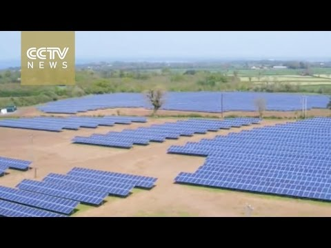 Solar energy firms call for end to EU tariffs