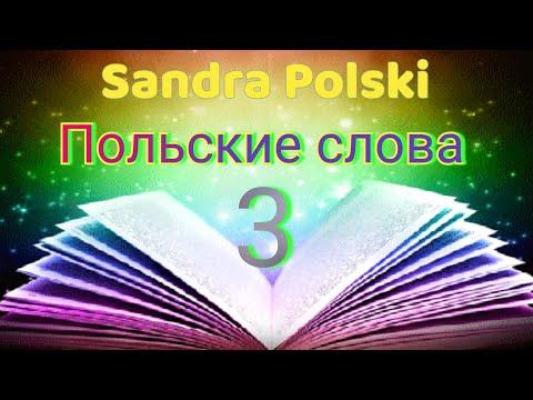 Урок польского. Словарик