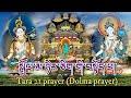 Gambar cover ☸Praises To Twenty-One Taras Dolma Prayer སྒྲོལ་མ་ཉེར་ཅིག་གི་བསྟོད་པ། Tara 21 prayer Dolma prayer