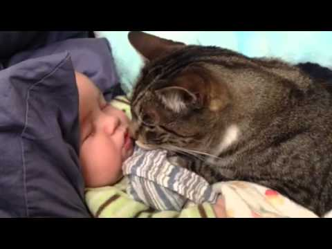 Baby sleeping with his cat